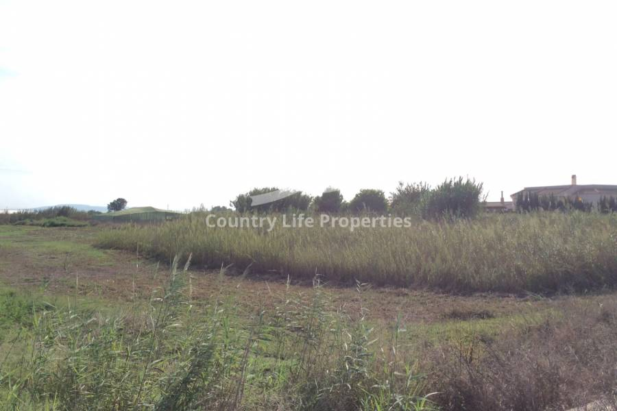 Resale - Plot - Dolores - Countryside